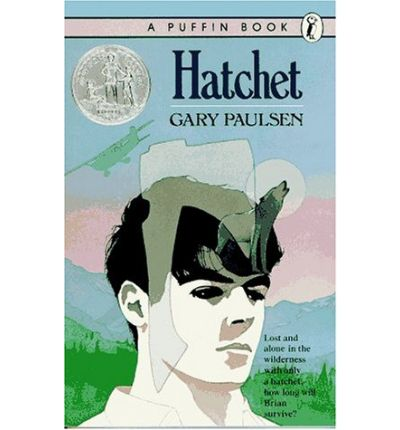 an overview of the novel hatchet by gary paulsen Hatchet book review by star22 this is a book review about what i thought if the book hatchet by: gary paulsen after reading it as a class crow testament analysis.