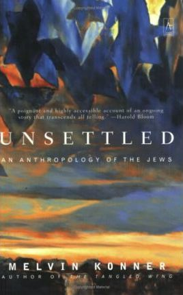 Unsettled : An Anthropology of the Jews