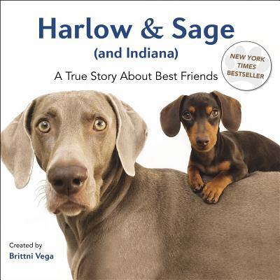 Harlow & Sage (and Indiana) : A True Story about Best Friends