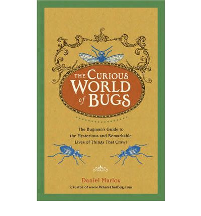 The Curious World of Bugs