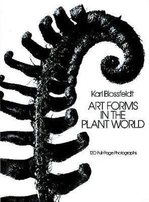 Art Forms in the Plant World