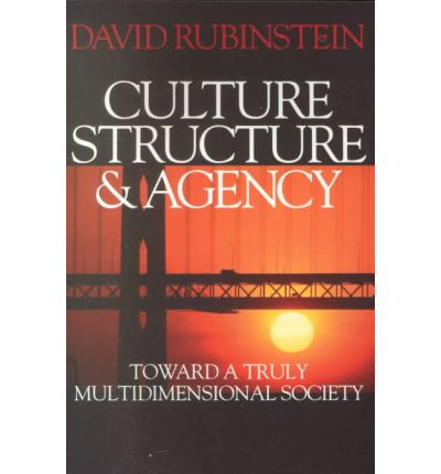 the work of giddens structure and agency sociology essay Giddens on agents and structures anthony giddens is one of the theorists whose ideas are most often invoked when the idea of social-structural explanation is in play his 1979 collection of essays, central problems in social theory: action, structure, and contradiction in social analysis , is a classic statement of some of his views.