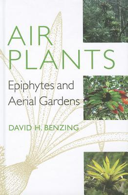 Air Plants : Epiphytes and Aerial Gardens
