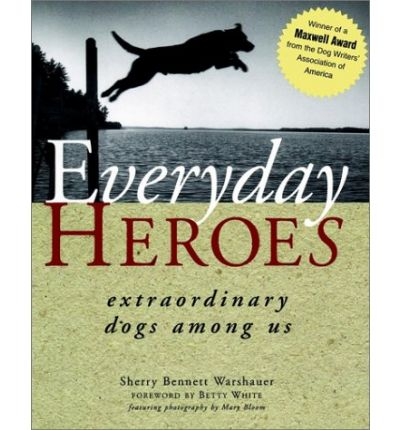 everyday heroes essay Everyday heroes after discussing the or helping others with everyday needs choose a hero in your community, in your family  provide short essays, videos.