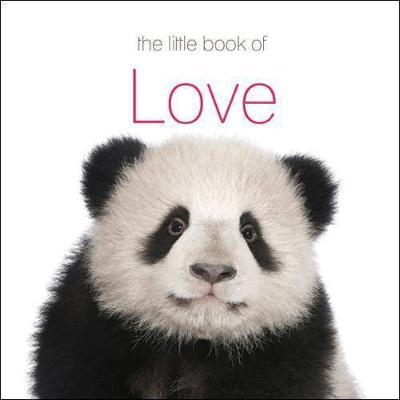 Little Book of Love
