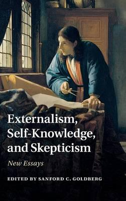Knowledge and reality skepticism essay