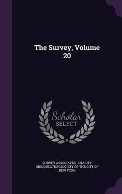 The Survey, Volume 20