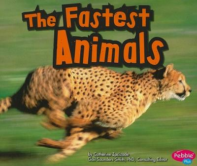 The Fastest Animals