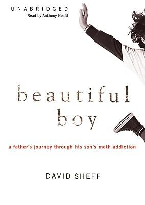 beautiful boy by david shelf Before nic sheff became addicted to crystal meth, he was a charming boy, joyous and funny, a varsity athlete and honor student adored by his two younger siblings after meth, he was a trembling wraith who lied, stole, and lived on the streets.