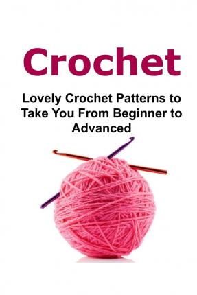 Crochet Patterns For Advanced Beginners : Crochet : Mary Costello : 9781512274387