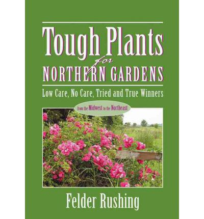 Tough plants for northern gardens felder rushing for Low care plants