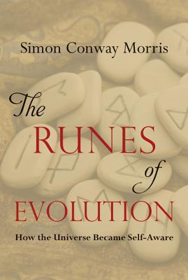 The Runes of Evolution : How the Universe Became Self-Aware