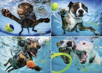Underwater Dogs 2 Jigsaw Puzzle