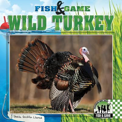 wild turkey sheila griffin llanas 9781624031113