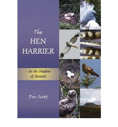 The Hen Harrier : In the Shadow of Slemish
