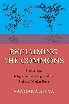 Reclaiming the Commons