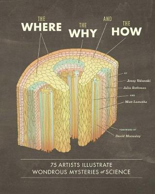 The Where, the Why, and the How
