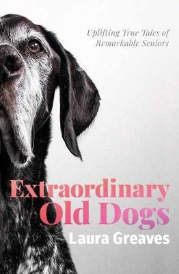 Extraordinary Old Dogs