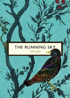 The Running Sky (The Birds and the Bees)
