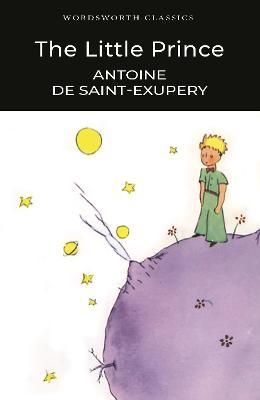a guide for grown ups antoine de saint exupery