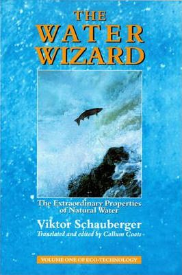 The Water Wizard