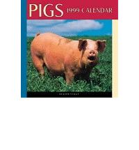 English audio books mp3 download Rural Pigs Calendar: 1999 by Browntrout Publishers PDF ePub iBook