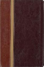 Message Parallel Study Bible-PR-NIV/MS-Numbered Personal Size