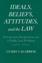 Ideals, Beliefs, Attitudes and the Law