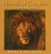 Marvels of Creation