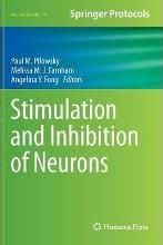 Stimulation and Inhibition of Neurons