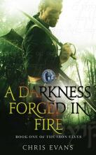 A Darkness Forged in Fire: The Iron Elves Book 1