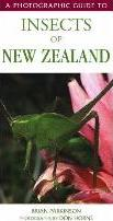 A Photographic Guide to Insects of New Zealand