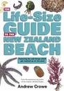 The Life-Size Guide to the New Zealand Beach: featuring the odd things which get washed up on the sand