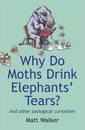 Why Do Moths Drink Elephants' Tears?