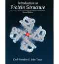 Introduction to Protein Structure