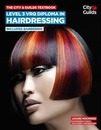 The City & Guilds Textbook: Level 3 VRQ Diploma in Hairdressing