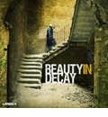 Beauty in Decay: The Art of Urban Exploration