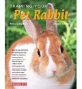 Training Your Pet Rabbit